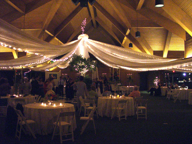 Canopy draping with lights