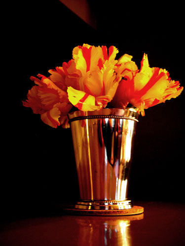 Parrot Tulips in a Mint Julep Cup | Chambliss Design