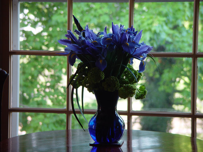 Flowers of Blue Iris and Viburnum in Blue Vase for Guests Visiting a Horse Farm During Derby Week