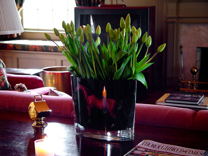 Flower arrangement for Juddemonte Farms 50 tulips