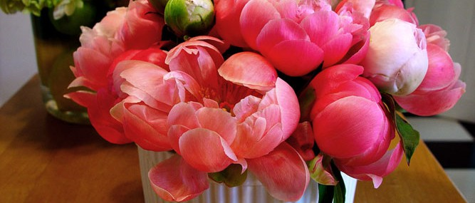 Lovely peonies for a luncheon.
