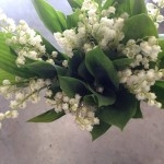 Sweet lily of the valley for a simple stunning bridal bouquet fit for a Princess