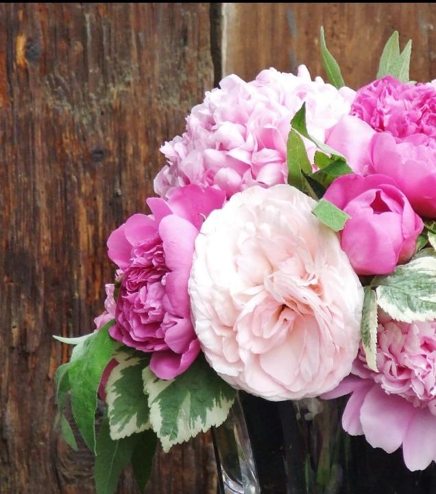 Peonies tulips and runnunculus – Chambliss Design ...